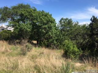 120 Oyster Spgs, Canyon Lake, TX 78133 (MLS #1238774) :: Ultimate Real Estate Services