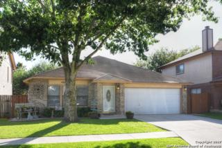 3717 Whitaker, Schertz, TX 78154 (MLS #1238853) :: Ultimate Real Estate Services