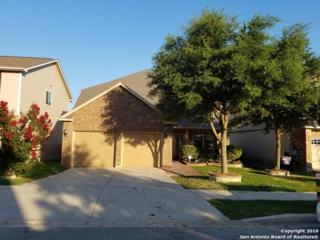 313 Saddle Rdg, Cibolo, TX 78108 (MLS #1238902) :: Ultimate Real Estate Services