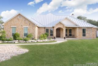 1164 Glenwood Loop, Bulverde, TX 78163 (MLS #1238963) :: Ultimate Real Estate Services