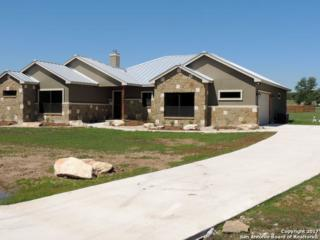 1046 Long Hollow, Canyon Lake, TX 78133 (MLS #1239018) :: Ultimate Real Estate Services