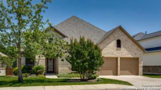16206 La Madera Rio, Helotes, TX 78023 (MLS #1239096) :: Ultimate Real Estate Services