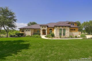 124 Bristow Way, Boerne, TX 78006 (MLS #1239137) :: Ultimate Real Estate Services