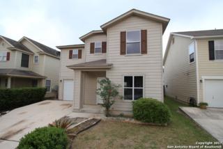 162 Hampton Cv, Boerne, TX 78006 (MLS #1239158) :: Ultimate Real Estate Services