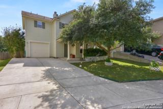 117 Hampton Cv, Boerne, TX 78006 (MLS #1239162) :: Ultimate Real Estate Services