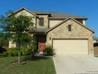 2224 Mesa Brk, Schertz, TX 78154 (MLS #1239179) :: Ultimate Real Estate Services