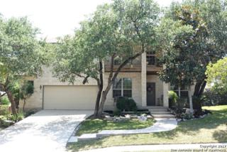 10648 Black Horse, Helotes, TX 78023 (MLS #1239201) :: Ultimate Real Estate Services