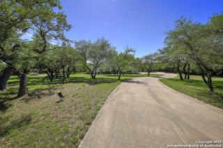 630 Hidden Oaks Dr, Bulverde, TX 78163 (MLS #1239225) :: Ultimate Real Estate Services