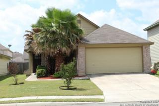 8606 Limpkin Ct, San Antonio, TX 78245 (MLS #1239303) :: Ultimate Real Estate Services