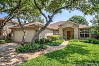 16175 Old Stable Rd, San Antonio, TX 78247 (MLS #1239306) :: Ultimate Real Estate Services