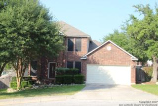 21618 Haven Ct, San Antonio, TX 78258 (MLS #1239309) :: Ultimate Real Estate Services