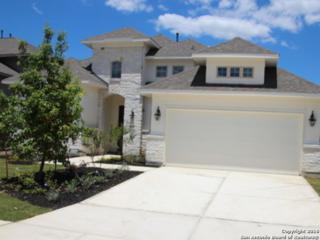 9011 Whimsey Ridge, Fair Oaks Ranch, TX 78015 (MLS #1176607) :: Exquisite Properties, LLC