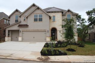 9011 Graford Ridge, Fair Oaks Ranch, TX 78015 (MLS #1185190) :: Exquisite Properties, LLC