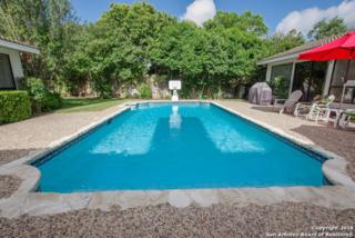 204 Vista Robles St, San Antonio, TX 78232 (MLS #1186400) :: Exquisite Properties, LLC