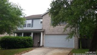 8522 Collingwood, Universal City, TX 78148 (MLS #1235267) :: Ultimate Real Estate Services