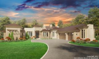 107 Wellesley Lndg, Shavano Park, TX 78231 (MLS #1235919) :: Exquisite Properties, LLC