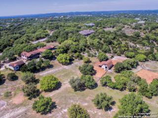 28486 Preakness Ln, Fair Oaks Ranch, TX 78015 (MLS #1238353) :: Exquisite Properties, LLC