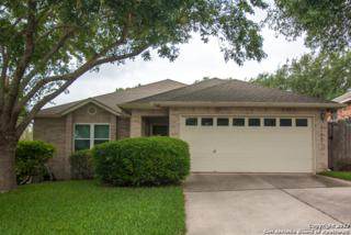 11303 Forest Gleam, Live Oak, TX 78233 (MLS #1238392) :: Ultimate Real Estate Services