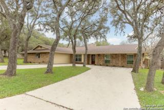 356 Mustang Circle, San Antonio, TX 78232 (MLS #1217587) :: Exquisite Properties, LLC