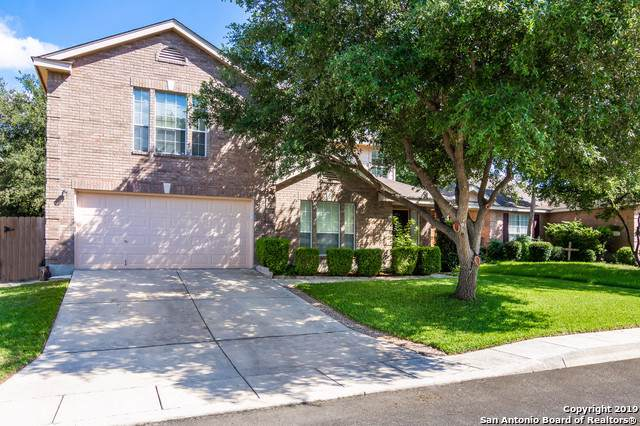 5306 Stormy Autumn, San Antonio, TX 78247 (MLS #1392918) :: The Gradiz Group