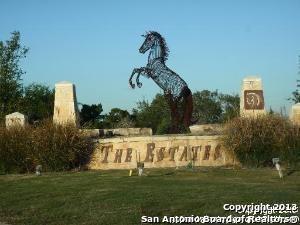 14155 Iron Horse Way, Helotes, TX 78023 (MLS #1033584) :: Magnolia Realty