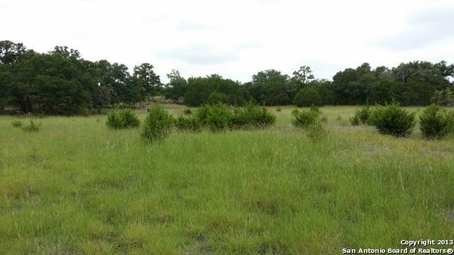 LOT 155 La Luna Dr   Cielo Springs, Blanco, TX 78606 (MLS #1036403) :: Exquisite Properties, LLC