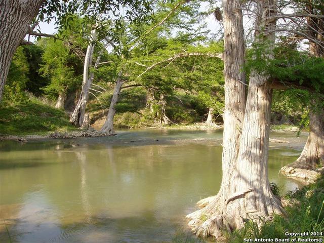 81.96 ACRES La Cancion, Boerne, TX 78006 (MLS #1040097) :: Magnolia Realty
