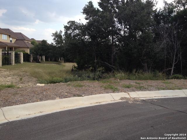 7106 Bluff Strand, San Antonio, TX 78257 (MLS #1085399) :: Erin Caraway Group