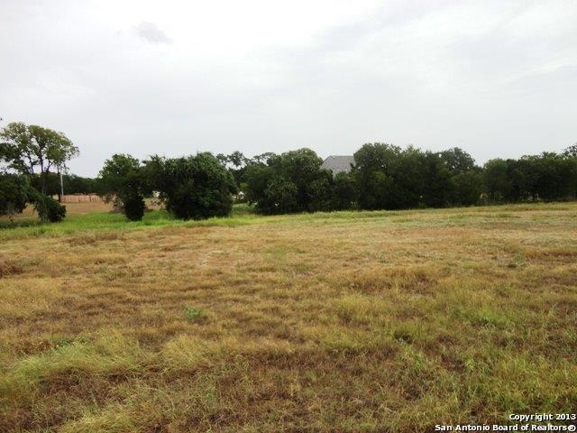 LOT 18A Oak Creek Pkwy, Seguin, TX 78155 (MLS #1096628) :: Alexis Weigand Real Estate Group