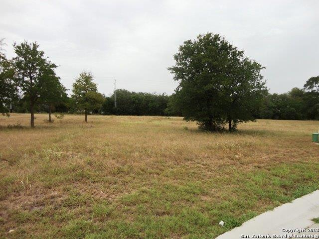 LOT 36 Oak Hvn, Seguin, TX 78155 (MLS #1096637) :: Exquisite Properties, LLC