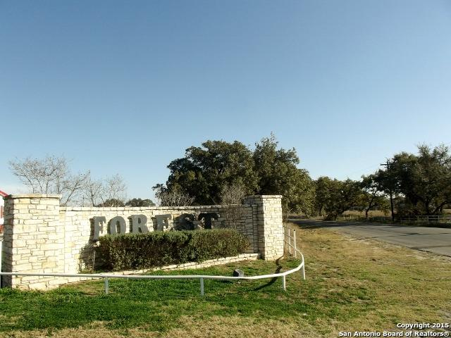 LOT 95 Cr 6866, Natalia, TX 78059 (MLS #1103215) :: Alexis Weigand Real Estate Group