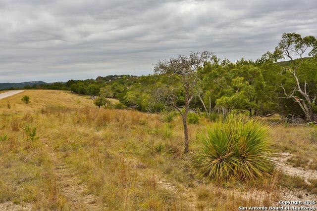 TBD LOT 14 Joshua Ranch Dr, Comfort, TX 78013 (MLS #1146121) :: Magnolia Realty