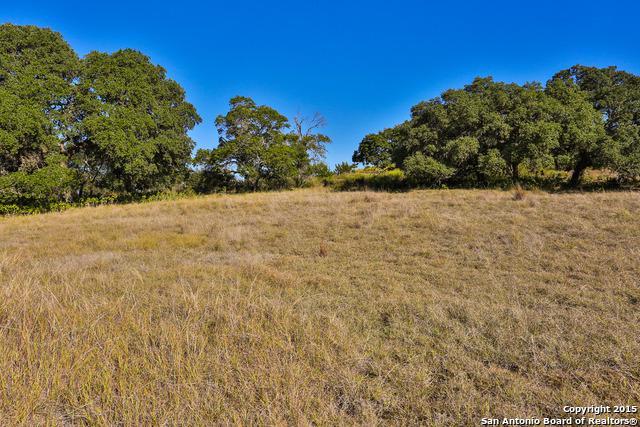 TBD LOT 32 Joshua Ranch Dr, Comfort, TX 78013 (MLS #1147123) :: Magnolia Realty