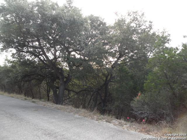 322/340/370 Herauf Dr, Canyon Lake, TX 78133 (MLS #1153242) :: Magnolia Realty