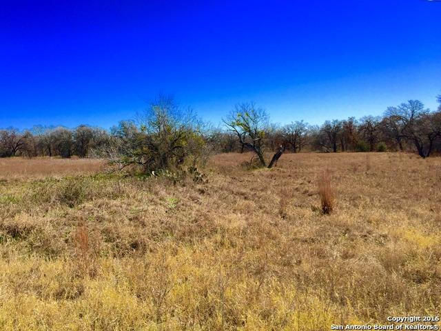 LOT 1;  118 Champions Blvd., La Vernia, TX 78121 (MLS #1160905) :: Alexis Weigand Real Estate Group
