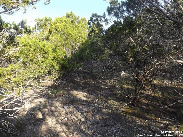 LOT 15 Kruse Loop - Photo 1