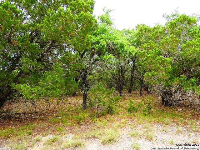 LOT 124 Lakewood Drive, Lakehills, TX 78063 (MLS #1174864) :: Exquisite Properties, LLC