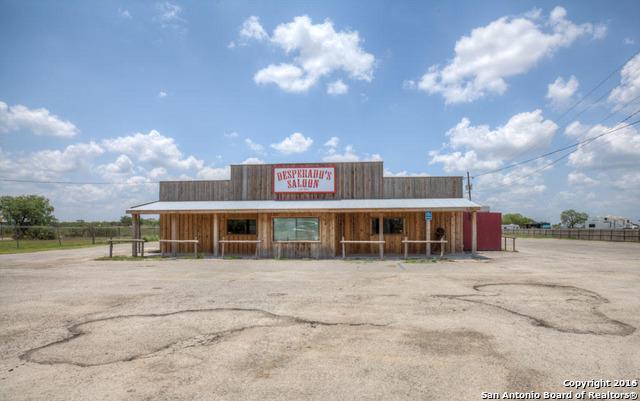 312 Sunset Strip St, Kenedy, TX 78119 (MLS #1178280) :: Neal & Neal Team