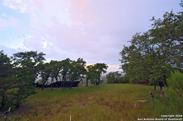 1191 Eagle Point Dr, Fischer, TX 78623 (MLS #1185615) :: Magnolia Realty