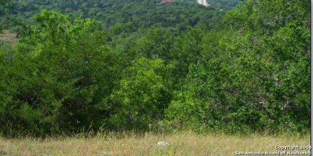 21615 Cielo Ridge Dr, San Antonio, TX 78256 (MLS #1202595) :: Magnolia Realty