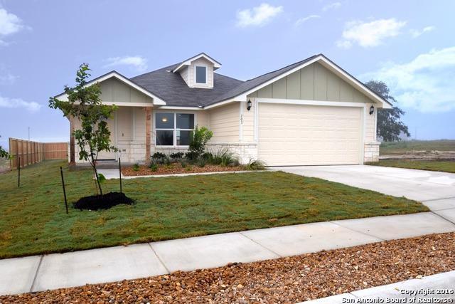 703 Cadena Loop, Kenedy, TX 78119 (MLS #1203964) :: Exquisite Properties, LLC