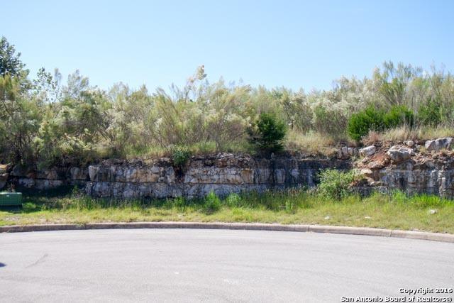 1006 Rock Shelter, San Antonio, TX 78260 (MLS #1206239) :: Alexis Weigand Real Estate Group