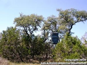 000 Panther Ridge - Photo 1