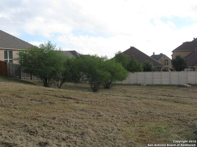 2714 Royalwood Dr, New Braunfels, TX 78132 (MLS #1212526) :: Maverick
