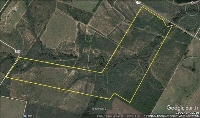 TBD Hwy 173, Bigfoot, TX 78005 (MLS #1212739) :: Tami Price Properties Group