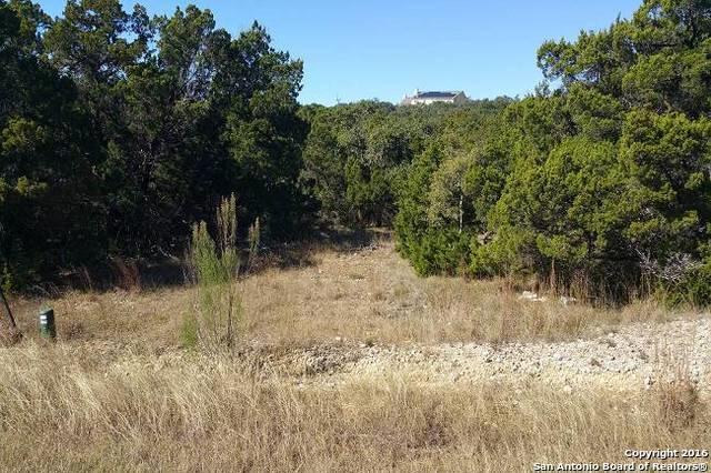 25619 Echo Mtn, San Antonio, TX 78260 (MLS #1215820) :: Magnolia Realty