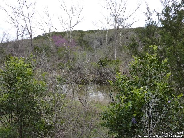 17032 Scenic Loop Road - Photo 1