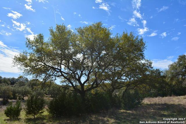 2248 San Jose Way, Canyon Lake, TX 78133 (MLS #1228145) :: Magnolia Realty