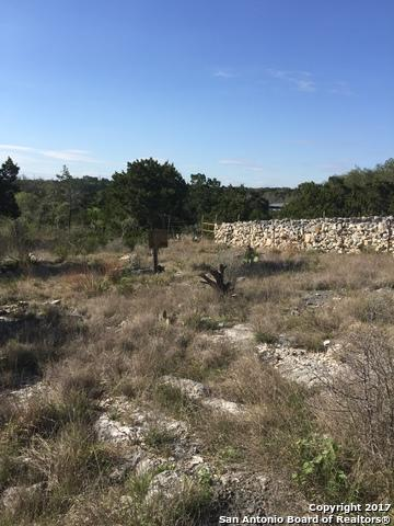 LOT 20 CR 273 County Road 273, Mico, TX 78056 (MLS #1228192) :: Magnolia Realty