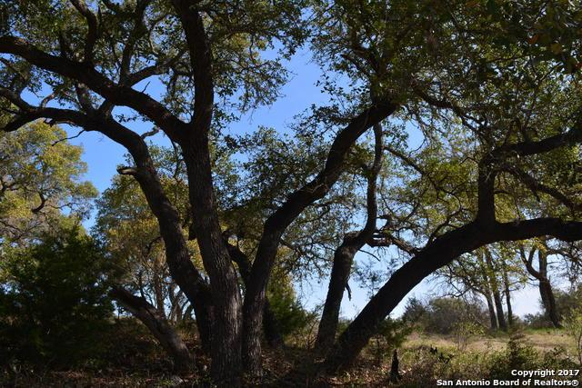 2240 & 2248 San Jose Way, Canyon Lake, TX 78133 (MLS #1228240) :: Magnolia Realty